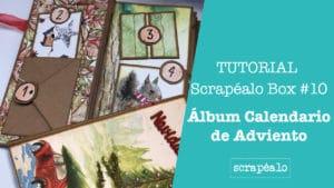 Tutorial Oficial de la Scrapéalo Box #10