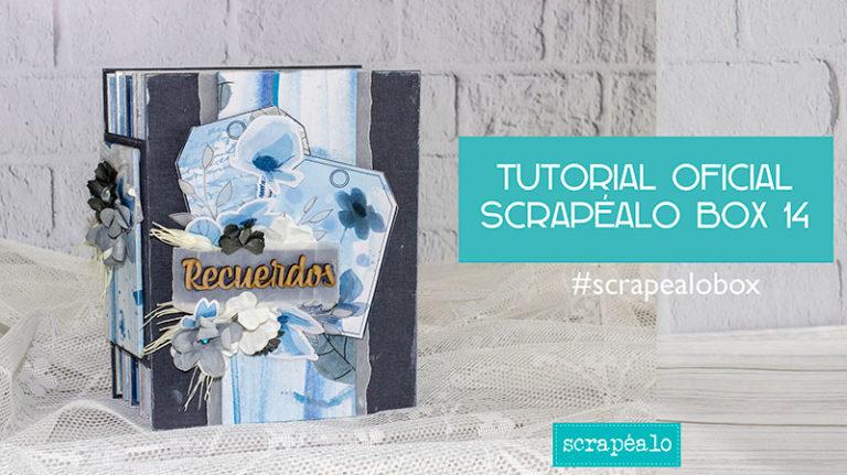 Tutorial oficial Scrapéalo Box #14
